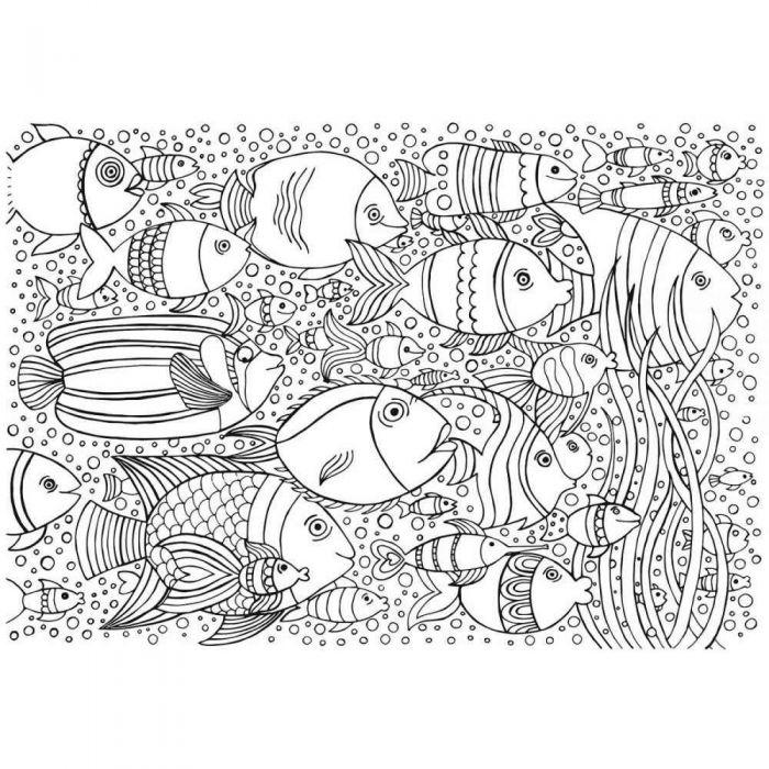 Coloriage Geant Theme Poisson Format 70x100 Cm Lot De 5 Papier A Peindre Support Papier Support Dessin Loisirs Creatifs