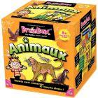 Brain box animaux