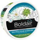 Boldair - 601319 - Boîte de gel destructeur d'odeurs Thé vert