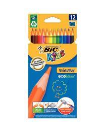 Bic kids - 8299891 - Crayon de couleur évolution - Lot de 12 pochettes de 12