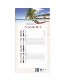 Calendrier mensuel 36x19 12f exotique