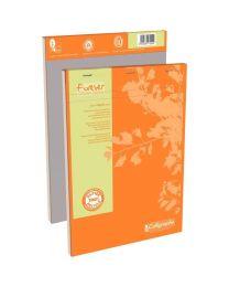 Clairefontaine - 17254 - Bloc bureau recyclé petit carreaux - A4 - 100 feuilles