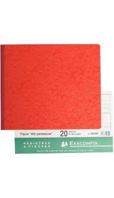 Exacompta - 16200E - Registre piqure - 20 colonnes sur 2 pages - 270x320mm - 80 pages