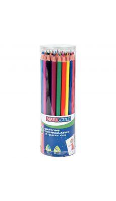 Pot de 48 crayons de couleur triangulaires pointe moyenne assortis