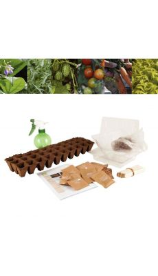 Carton de 30 sachets de graines de légumes bio