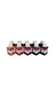 Coffret de 10 flacons de 60 ml d'encre à dessiner, coloris assortis