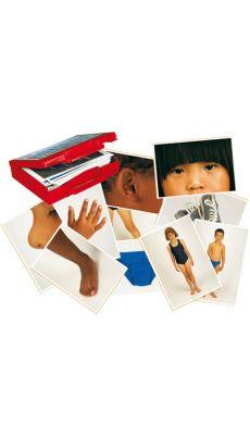 """Jeu """"le corps humain et les vetements"""" - 50 cartes-images"""
