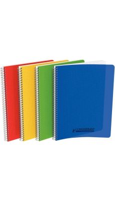 HAMELIN - 400113177 - CAHIER RELIURE INTEGRALE POLYPRO 180 PAGES A4 5X5 ASSORTIS