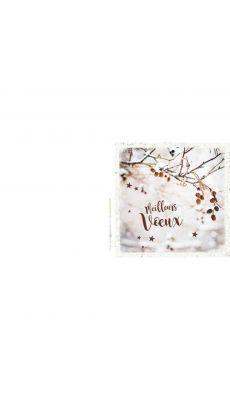 Bouchut grandremy - Carte de vœux thème hiver - Paquet de 25