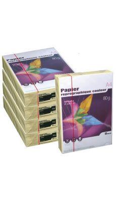 First - 63191 - Ramette papier A4 80g - Jaune - 500 Feuilles - Carton de 5