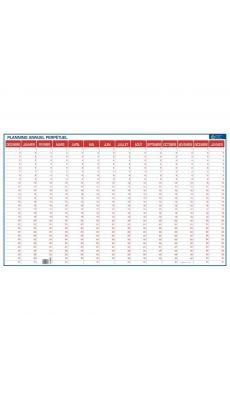 Planning 14 mois perpétuel PVC souple 60x99 cm